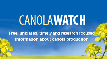 canola-watch