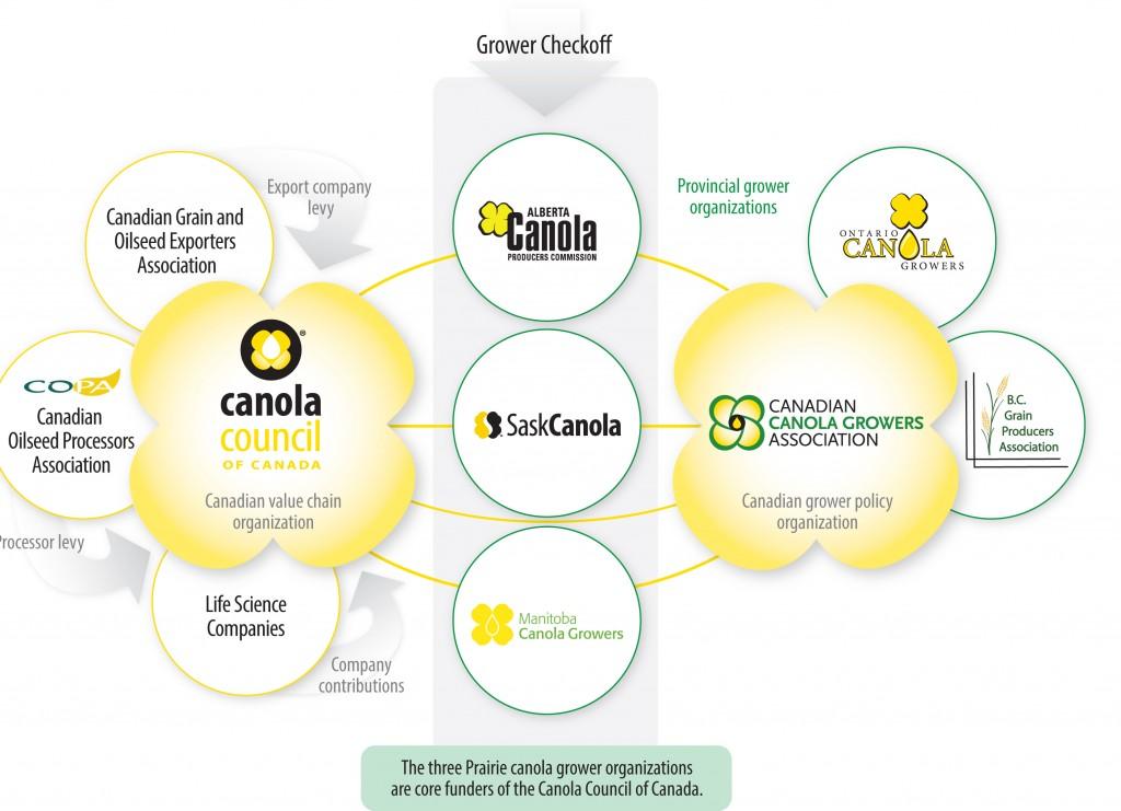 Canola Value Chart