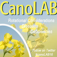 CanoLAB-feature-image-for-web